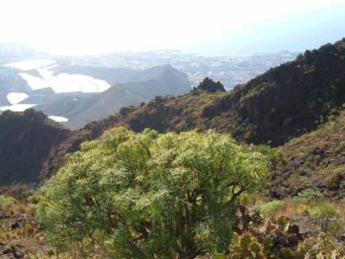 Ortschaft La Caldera  - Bild 1