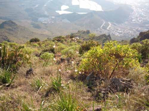 Ortschaft La Caldera  - Bild 2