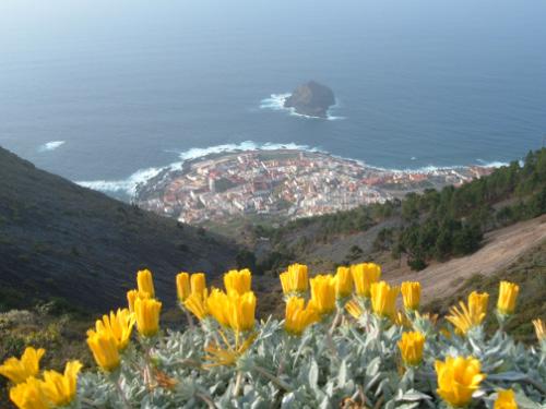 Ortschaft Garachico  - Bild 2