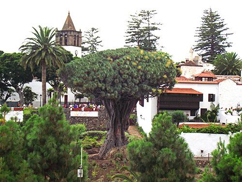Ortschaft Las Angustias - Bild 1