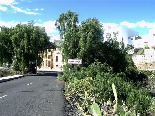 Ortschaft Arico Viejo - Bild 1