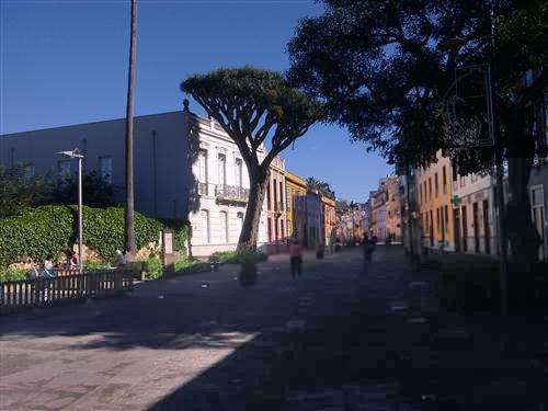 Gemeinde La Laguna - Bild 3