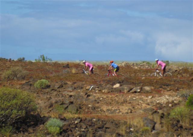 Biken - Mountenbiken auf Teneriffa - Bild 1
