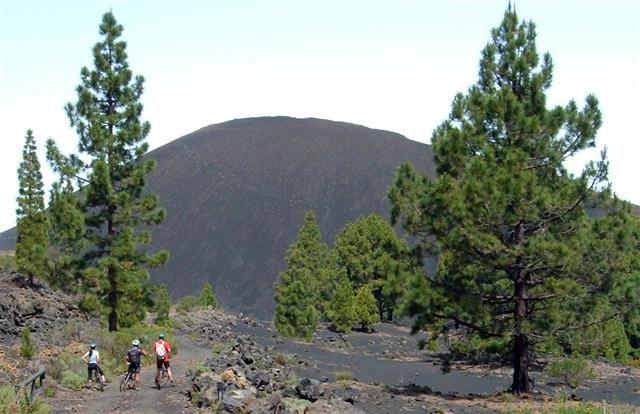 Biken - Mountenbiken auf Teneriffa - Bild 2