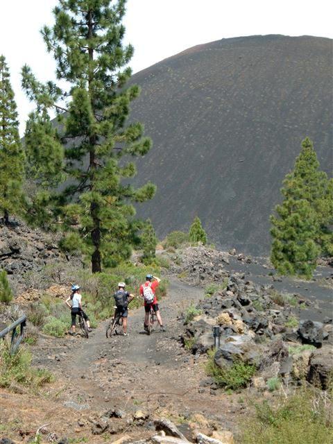 Biken - Mountenbiken auf Teneriffa - Bild 3