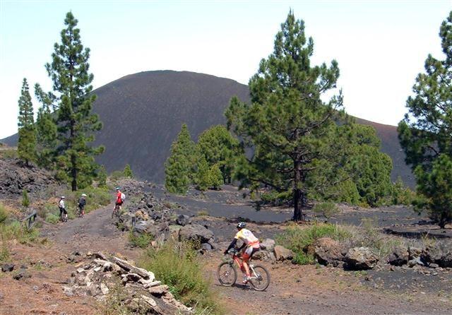 Biken - Mountenbiken auf Teneriffa - Bild 4